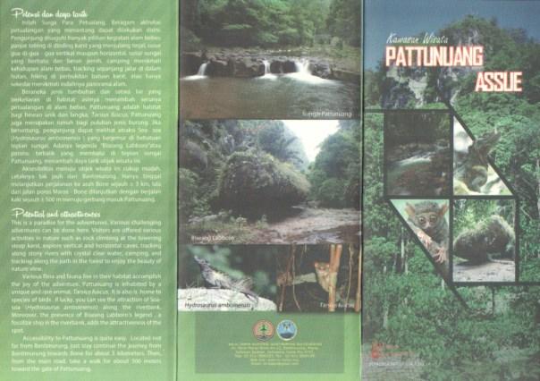 Pattunuang1